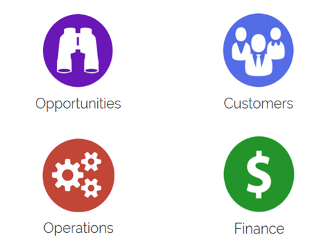 The Four Pillars of Business Analytics™  A simpler way of viewing and assessing your business information